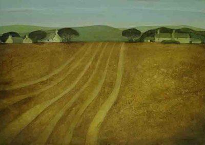 fallow-field II
