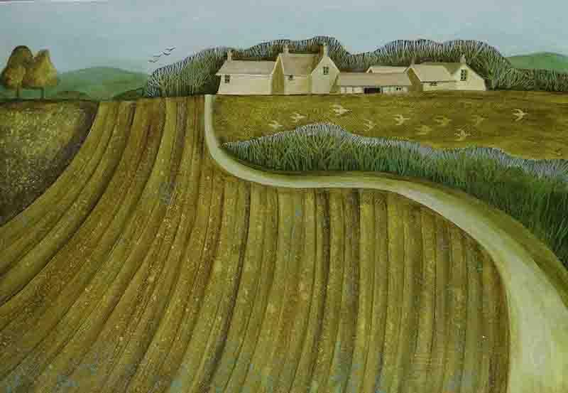 furrowed-field